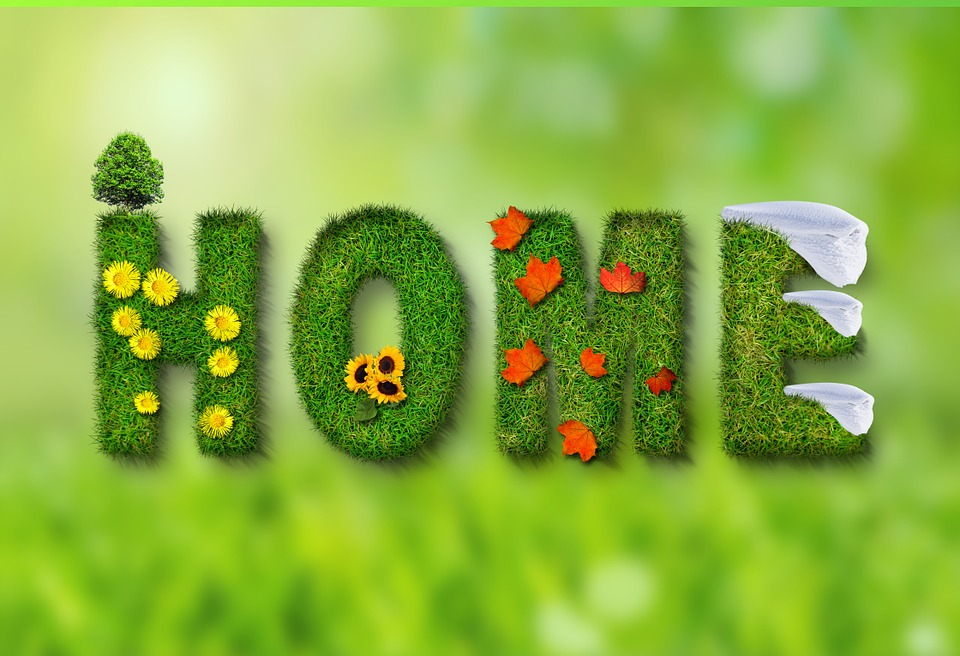 Home - Pixabay